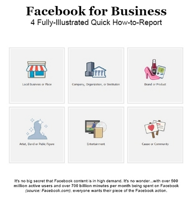 Product picture Facebook for Business: Fully Illustrated